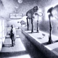 2005-18-06.jpg