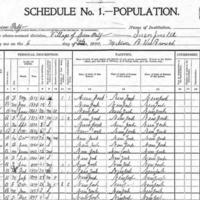 1900 census.jpg