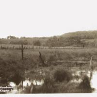 L.E. Jones Across the Meadow