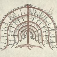 low res tree.jpg