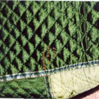 Phebe Rutsen quilt (tx00210)