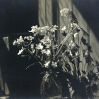 WAAM-1985-21-05-Hunt-Floral.jpg